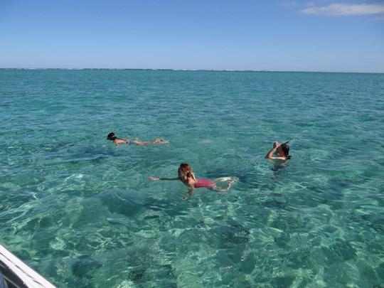 01. Marea in Mauritius