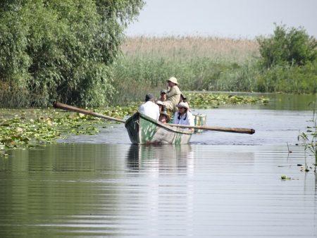 11. Canelele din Delta