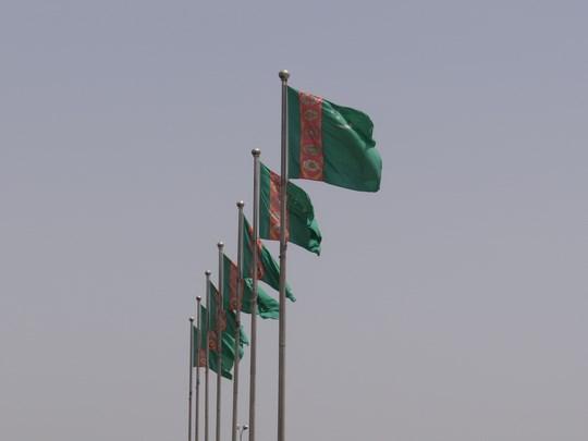 11. Steag Turkmenistan
