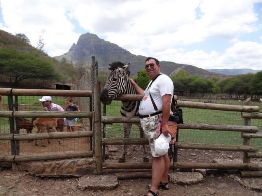 12. Zebra Casella Park