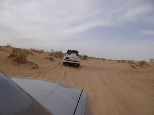 21. Desert Safari