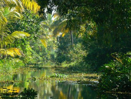 04, Backwaters - India