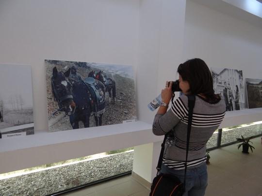 12. Expozitia #PrinMehedinti