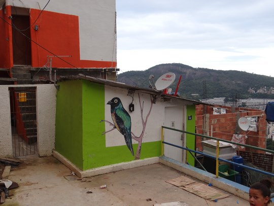 16. Pictura in favela