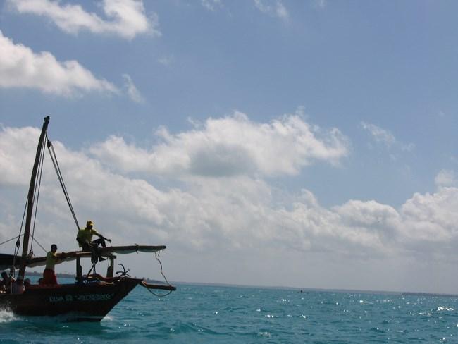 03. Blue Safari - Zanzibar