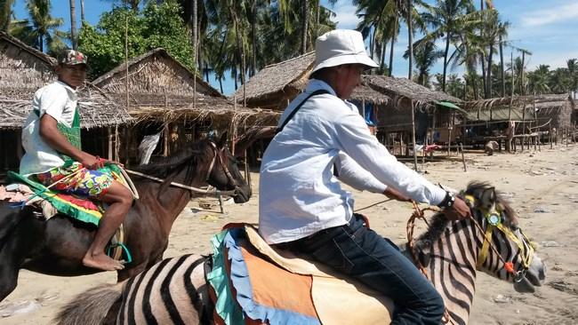 9. zebra si calul, chaung tha (Copy)