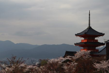 03. Kyoto in time of Sakura