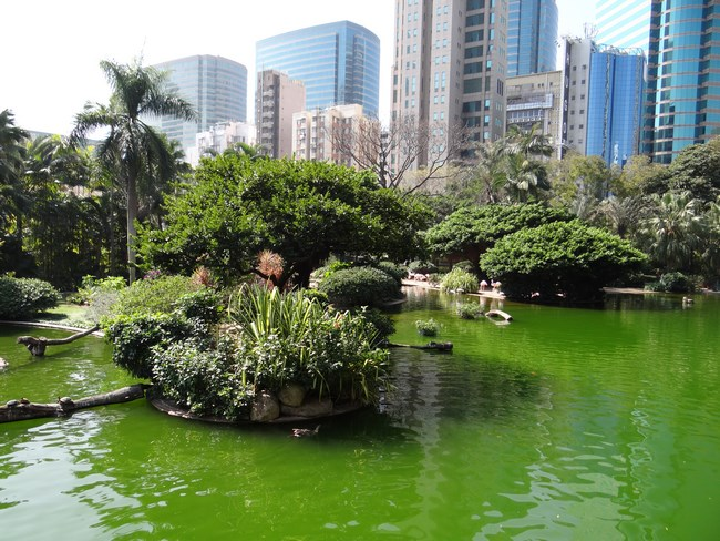 05. Parc in Hong Kong