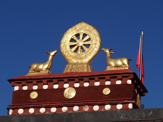 24. Caprioare budiste