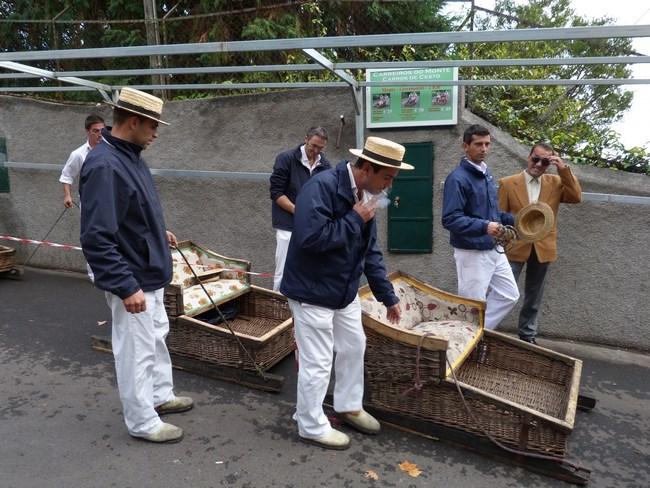 08. Sanii in Funchal