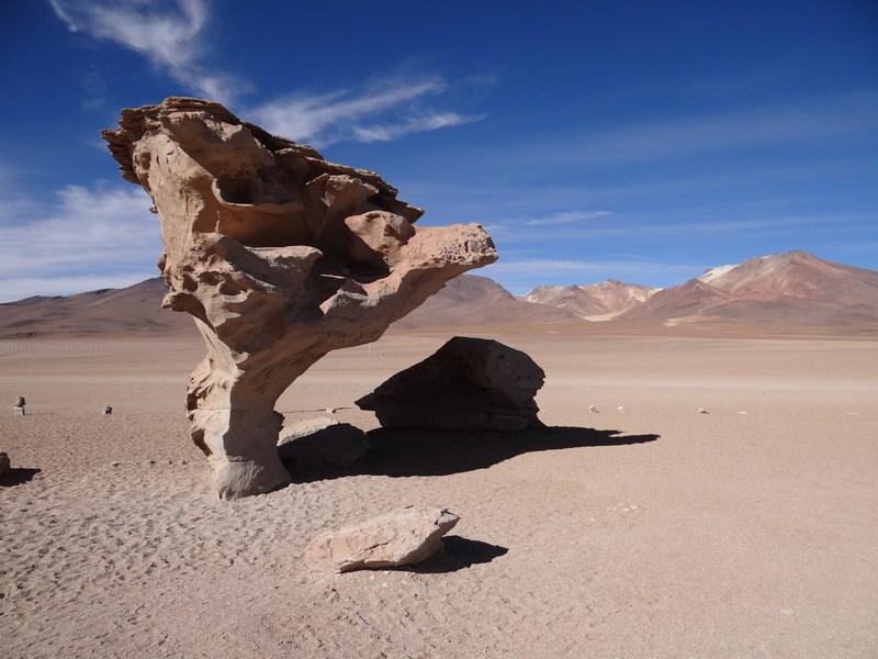 06. Arborele de piatra