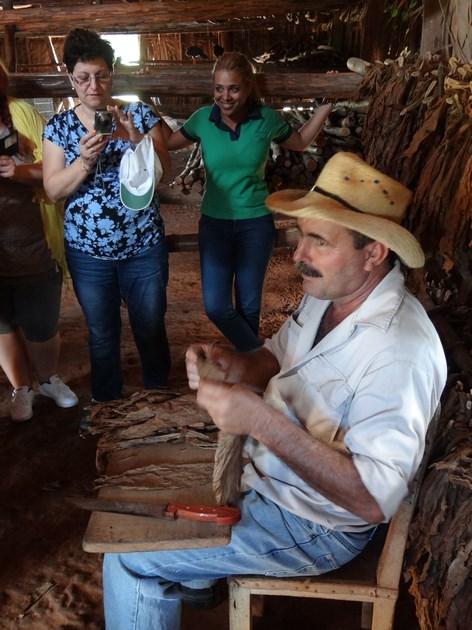 07. Cultivator de tutun
