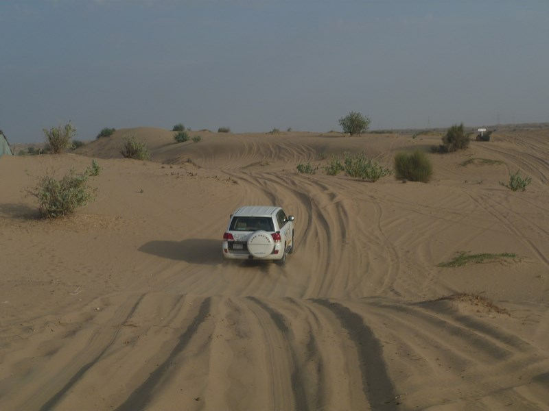 14. Desert safari - Dubai (Copy)