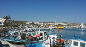 08. Portul Aya Napa