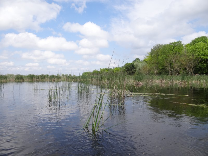21. Delta Neajlovului