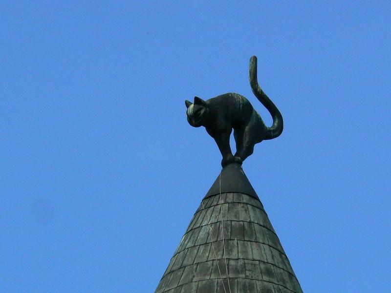 06. Pisica din Riga