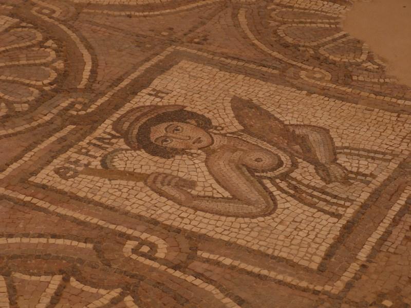 13. Mozaic Petra
