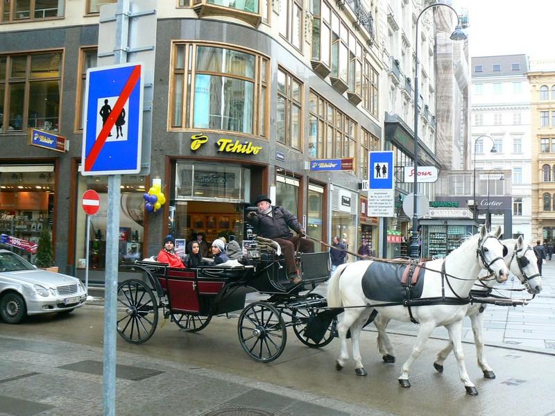 09. Caleasca in Viena