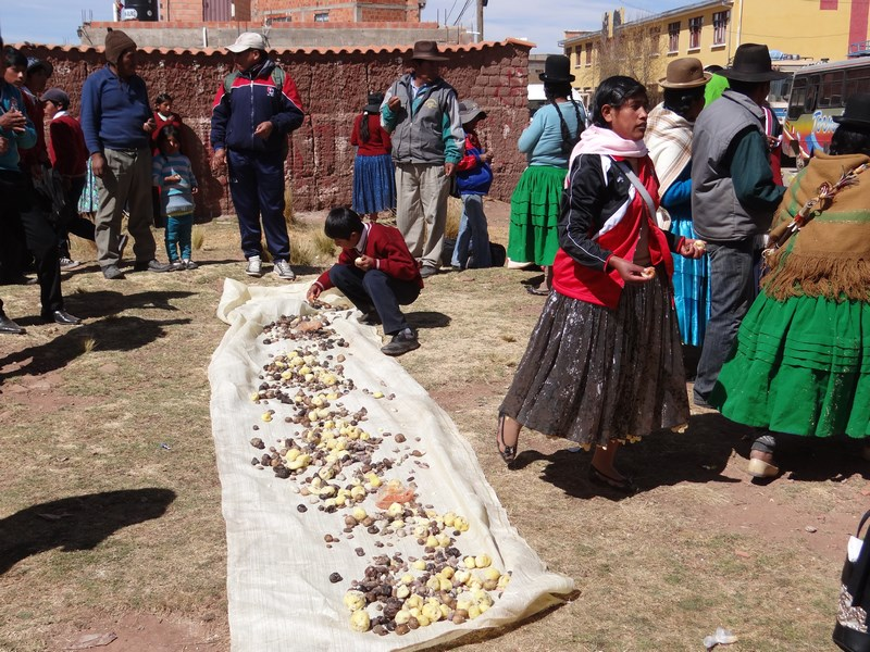 22. Cartofi Bolivia