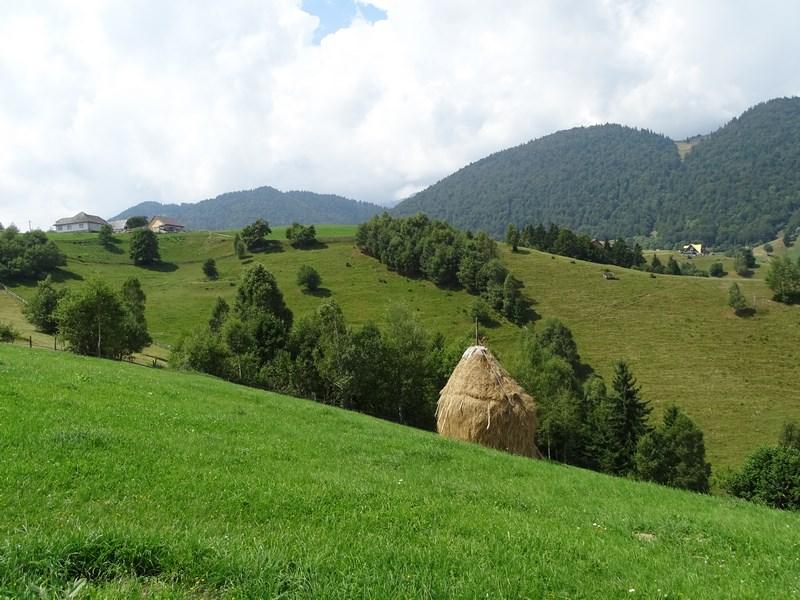 29. Peisaj in Carpati