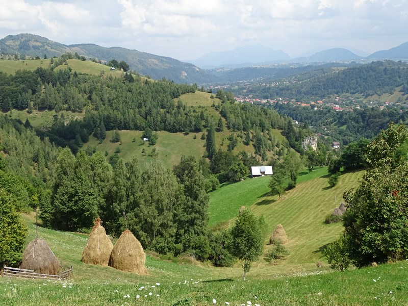 30. Vara in Carpati