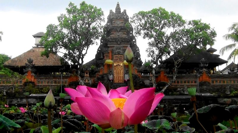 Saraswati Temple - See the Beauty of Lotus Blossoms