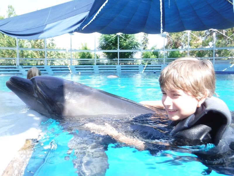 04-david-cu-delfin