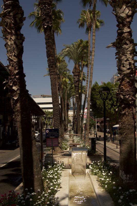 38-antalya-palmieri-cu-fantana-pe-mijlocul-bulevardului
