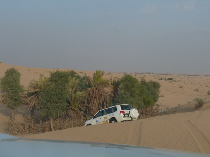 07-desert-safari-copy