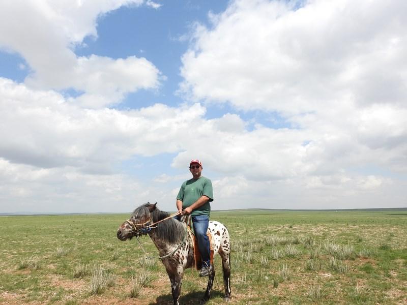 05-calare-in-mongolia