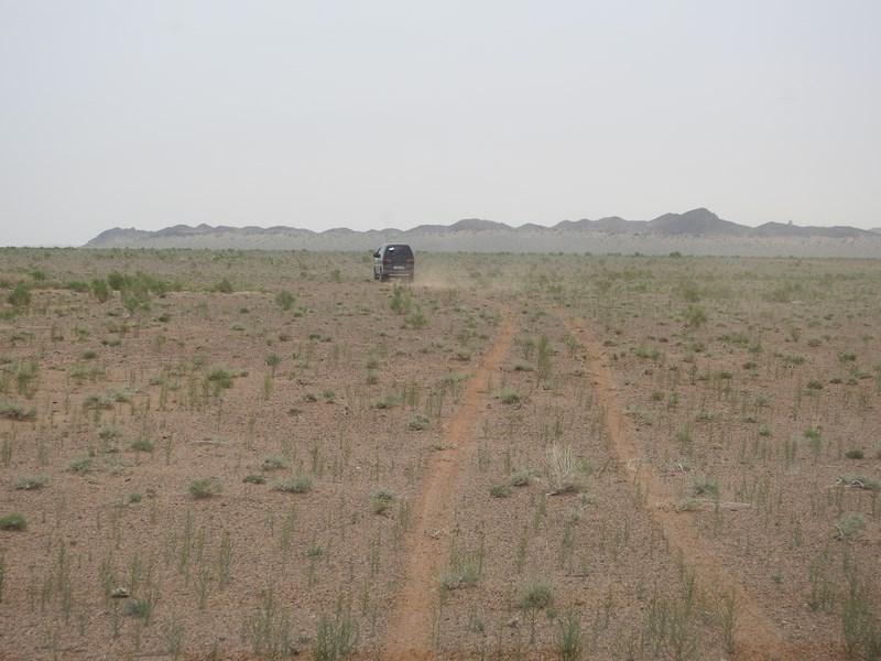 08-sosele-mongolia