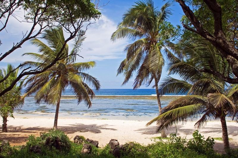11826743 - beach in kenya, tiwi beach