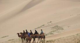 44. Gobi Desert