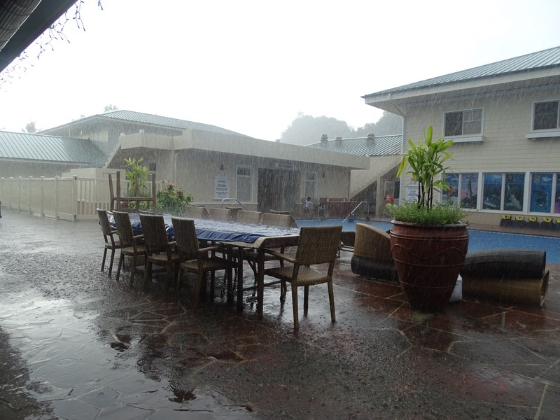 35. Ploaie tropicala