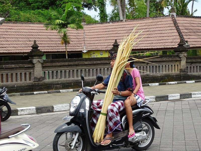 04. Bambus pe motoreta