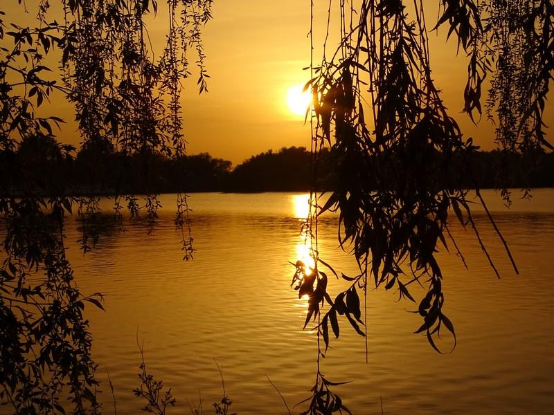 12. Apus de Soare Delta Dunari