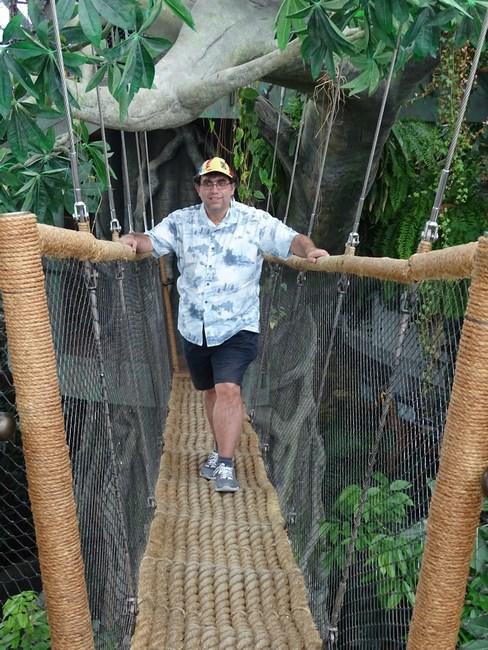 12. Pod jungla