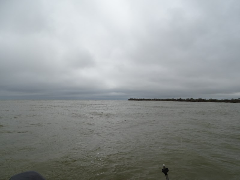 16. Varsare Dunare in Mare