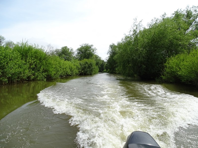 26. Canale Delta