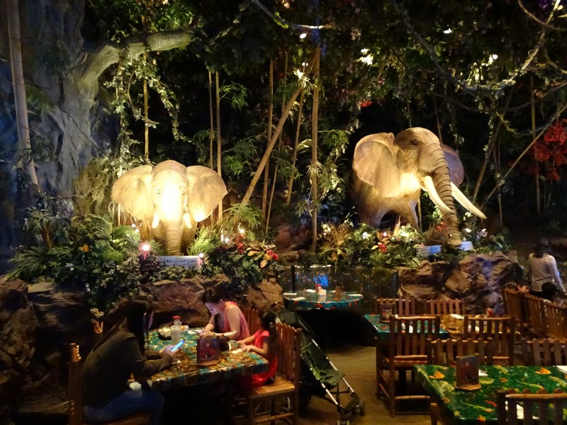 28. Rainforest restaurant