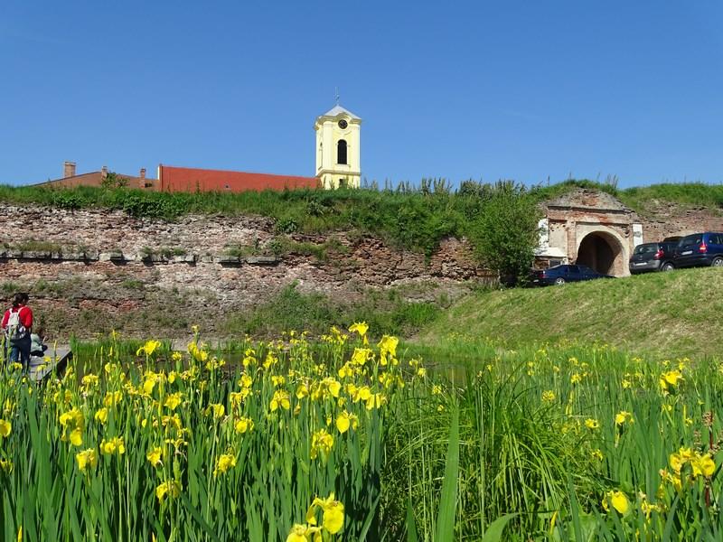 39. Ziduri cetate Oradea