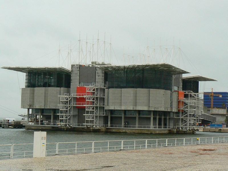 08. Oceanariu Lisabona