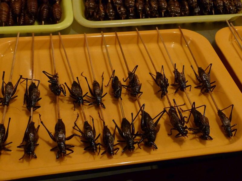 04. Snacks Wangfujing