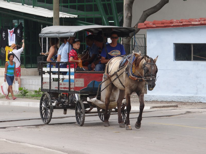 16. Transport in comun - Cuba