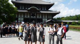 15 Grupuri De Copii In Vizita La Nara