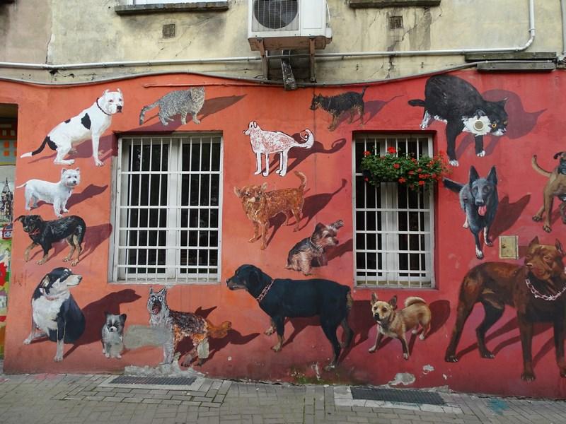 . Wroclaw Capitala Culturii