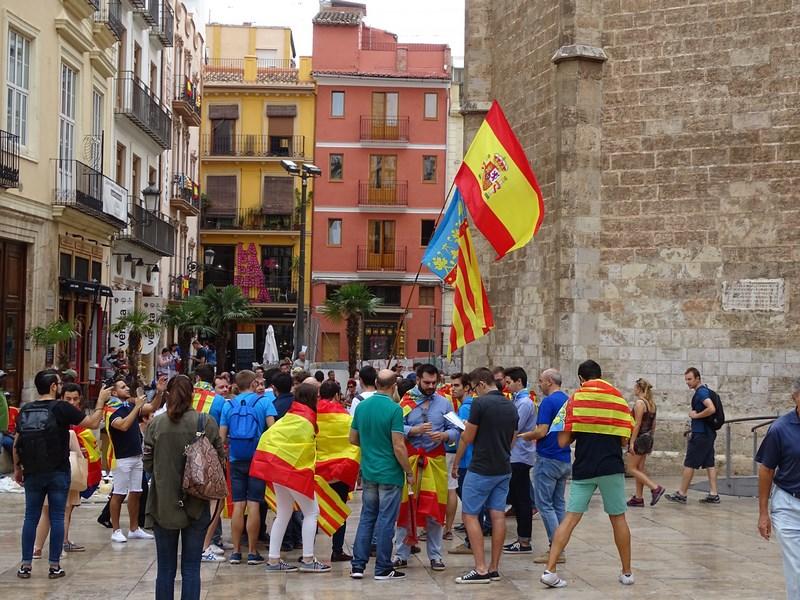 . Demonstratie Pro Spania