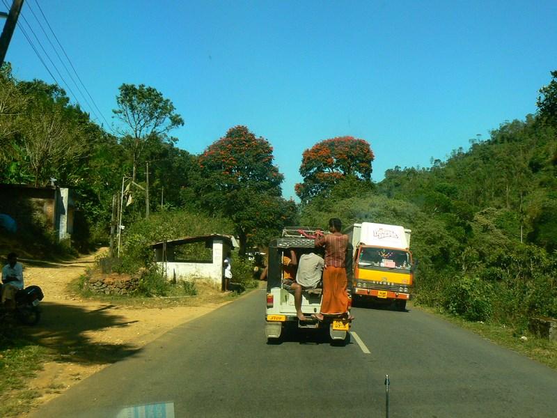 . Sosea Kerala