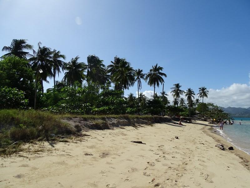Plaja Cowrie