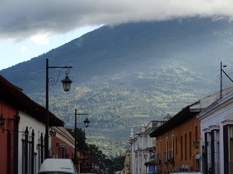 Apus Antigua